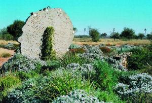 Ilasa awards for Greeninc landscape architecture