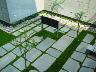 landscape sa 2006 04 mtn1 MTN