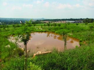 landscape sa 2006 04 mtn4 MTN