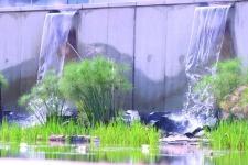 landscape sa 2006 04 mtn5 MTN