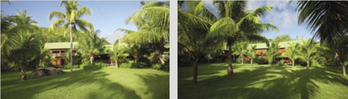landscape sa 2006 06 sunparadise5 Paradise Sun