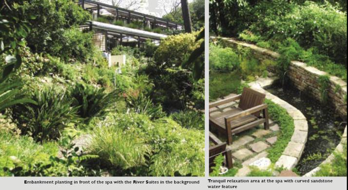 Vineyard hotel spa for Sa landscaping